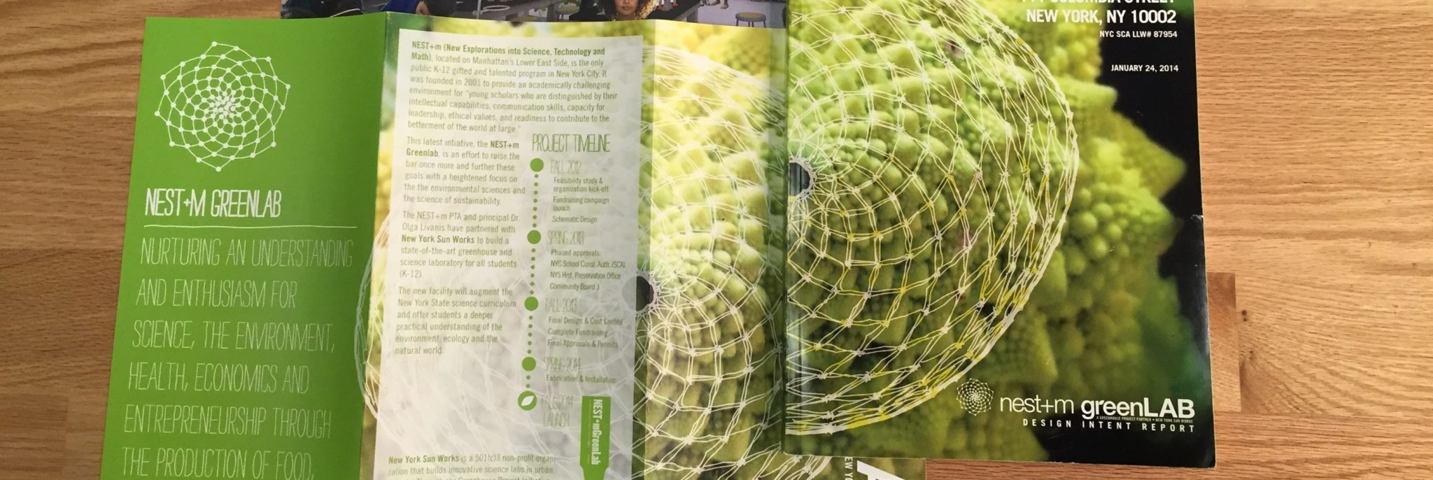 Learning from Sunflowers: BioMimetics in Greenhouse Design