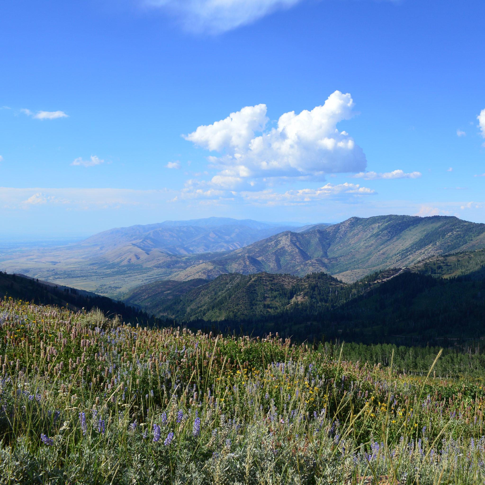 A Mountain Retreat in Eden (Utah)